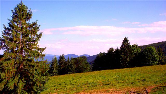 Pohlad na Radzim ponad Dankovú dolinu