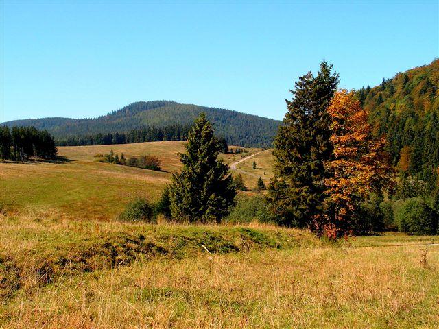 Na lúkach Voniarok v pozadí Čierna hora