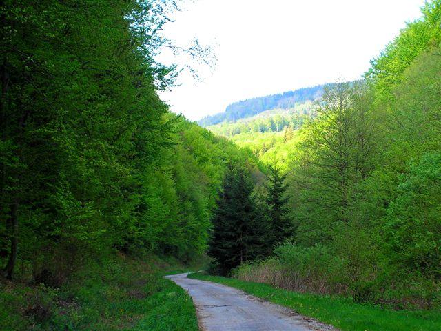 V údolí Tešnárok