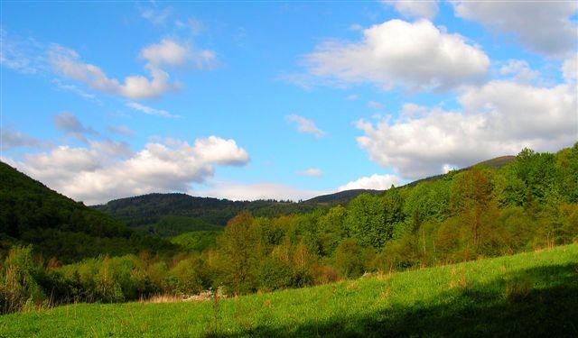 V údolí Tešnárok s pohľadom na Hirschkholung - Jeleniarku