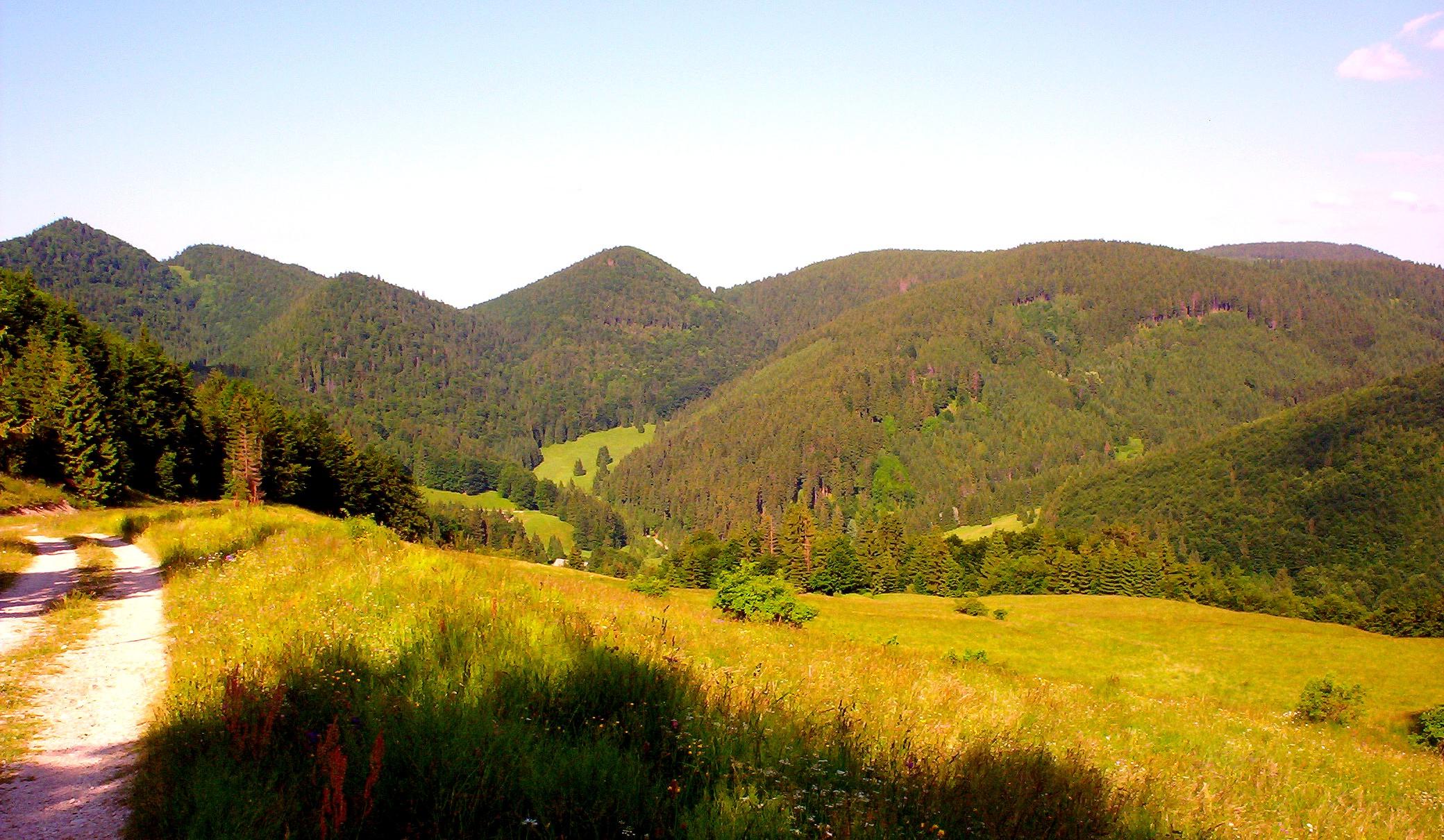 Nad Dankovou dolinou od Štefana Dobšinca